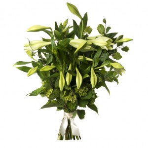 Scented Christmas Lilies