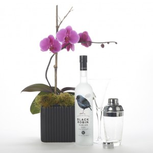 Black Robin Gin and Orchid Gift